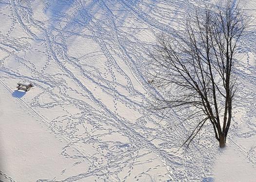 bella con neve